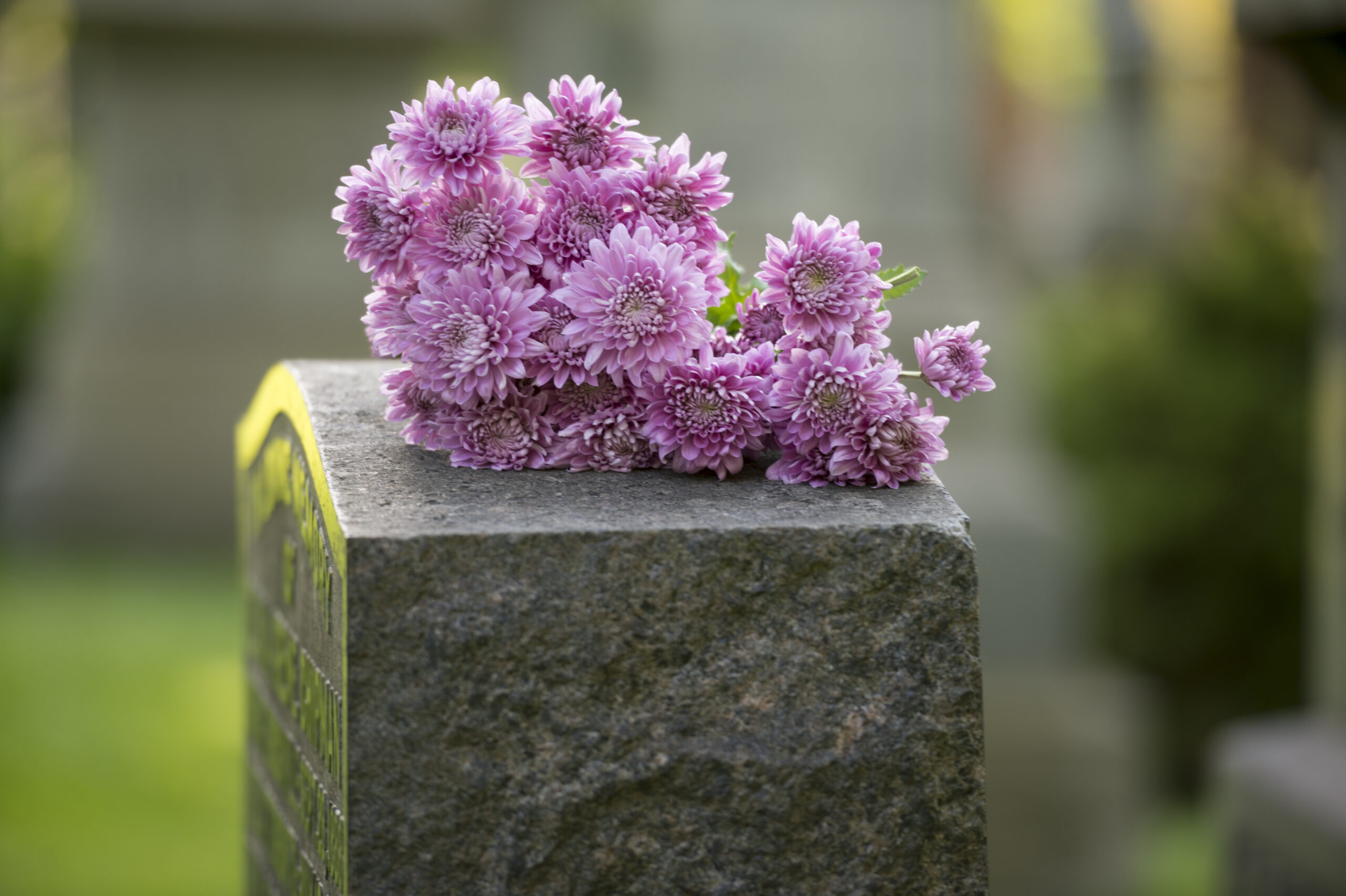 Photo of a grave stone with purple flowers on top